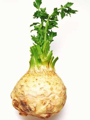 celeria